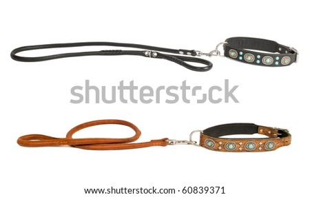 Two leather dog collars inlaid with stones and leashes isolated