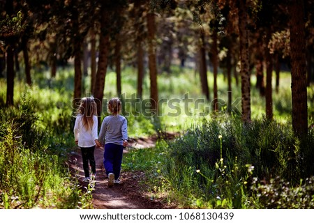 Two little sisters walking and playing on the road in countryside on a warm summer sunset. Cute little girls. Back view #1068130439