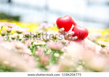 Two lovers' hearts are in the field of colorful flowers. The atmosphere is full of love, happiness, fulfillment. #1186206775
