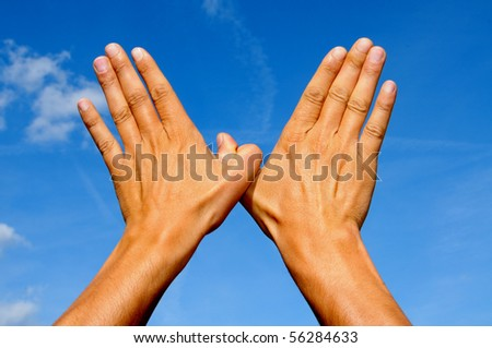 two man hands forming a dove of peace