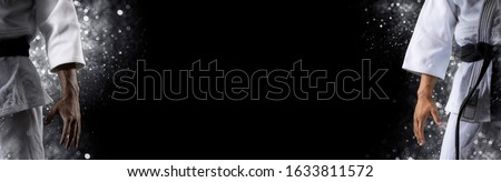 Two martial arts masters, karate practice. Sports banner. Horizontal copy space background Foto stock ©