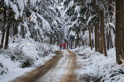 two men in red suits walking along the snowy forest road