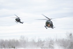 Two military helicopters land in a snowy Canadian forest.