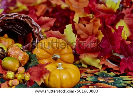 Two mini pumpkins with fake orange, red and yellow leaves isolated on white #501680803
