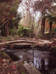 Two mini wooden walking bridges over a pond with a small stream of water fountain. Bridges and fountains have significant meaning in dream interpretations