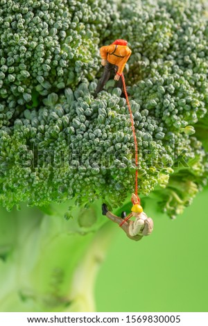 Two miniature figurines climbing on top of a broccoli showing teamwork, strenght, endurance and healthy living