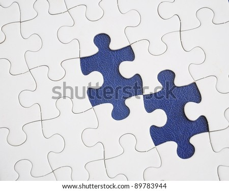 Two missing puzzle pieces