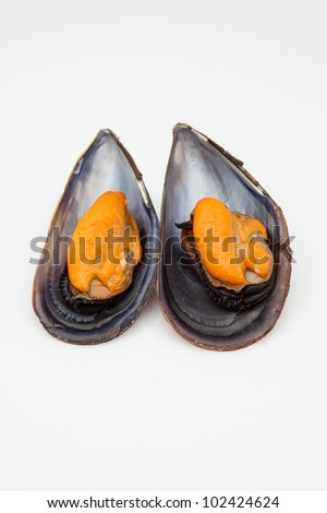 two mussels cooked ready to eat