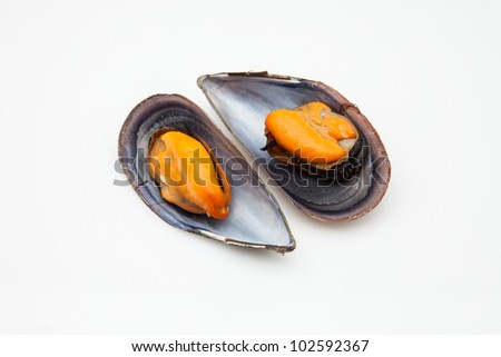 two mussels cooked ready to eat - stock photo