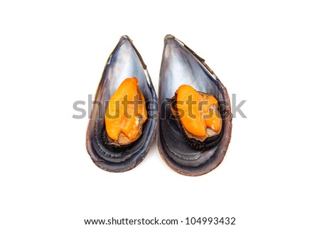 two mussels steamed ready to eat
