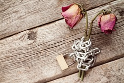 Two old chained roses symbolize endless love