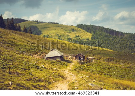 Two old houses in the mountains Carpathians on a sunny summer day #469323341