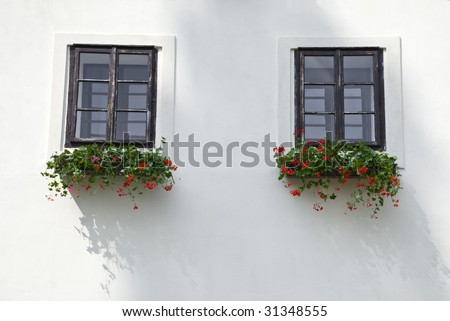 Two old windows decorated by beautiful small red flowers in flowerpots
