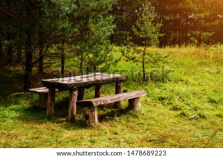 Two old wooden benches and a table in the forest in the green grass. Picnic in the forest. forest wooden table and benches for relaxation #1478689223