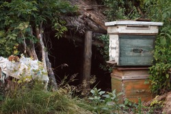 Two old wooden closed beehives stand on each other against the background of an abandoned shack, aconcept of an abandoned village