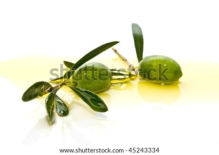 Two olive branches with olives