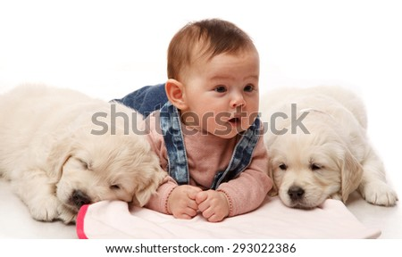 Stock Photo Two One month old puppie of golden retriever with little four   month girl