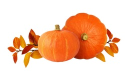Two orange pumpkins and autumn leaves isolated on white