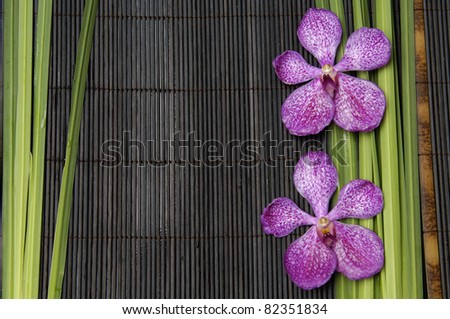 two orchid and spring plant on bamboo stick straw mat
