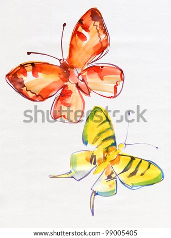 Two original butterflies on a white background. Watercolor.
