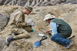 two paleontologists extract fossilized remains from the ground in the desert