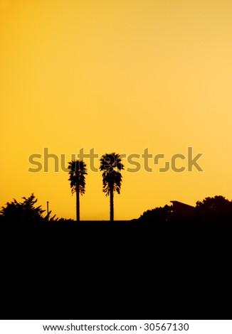 Two palm tree silhouettes against orange sunset sky on California coast.