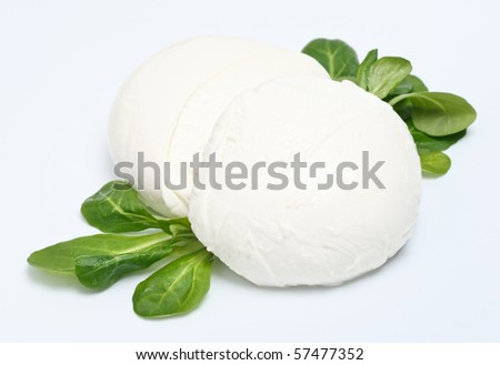 Two peaces of mozzarella cheese with lettuce on gray background