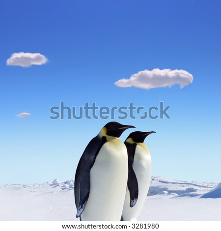 Two penguins at the south pole