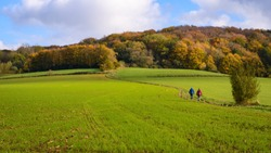 Two people hiking on Kemmelberg hill near Kemmel. Autum forest of Kemmel Hill. Walking trail through field with Kemmelberg (Mont Kemmel) in background. Kemmelberg, Heuvelland, Flanders, Belgium.