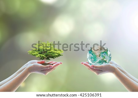 Two people human hands holding/ saving growing big tree on soil eco bio globe in clean CSR ESG natural background: World environment day go green concept: Element of this image furnished by NASA