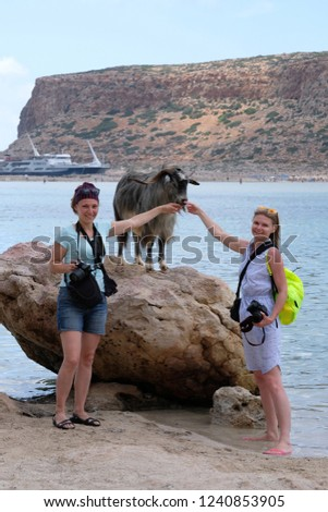 Two photographers with cameras and a Kri Kri goat on a stone stand by the sea