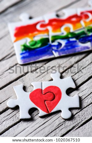 two pieces of a puzzle forming a heart and some other pieces forming a rainbow flag, on a white rustic wooden surface #1020367510