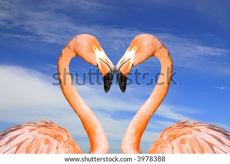 Two pink flamingos like heart on the clouds sky background