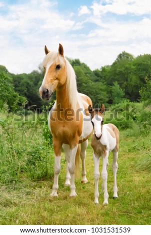 Two ponies, mare and her cute baby foal standing side by side in a green meadow, coat color pinto with tobiano patterns also called skewbald, Germany.