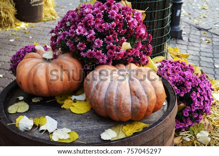 Two pumpkins among flowers and autumn leaves on a wooden barrel #757045297
