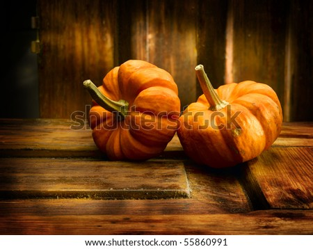 Two pumpkins in nice antique environment