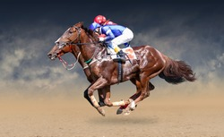 Two racing horses neck to neck in fierce competition for the finish line