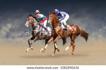Two racing horses neck to neck in fierce competition for the finish line #1082840636