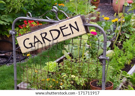 Two raised garden beds filled with flowers and vegetables are nestled in small backyard. A delightful rustic sign hanging jauntily on a recycled gate adds an artistic accent. Сток-фото ©