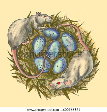 two rats climbed into a bird's nest. Mouse killers, pests