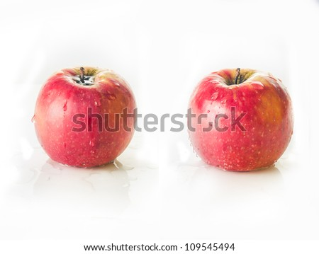Two red apples with water drops on a white background