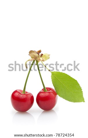 Two red cherry with leaf isolated on white background