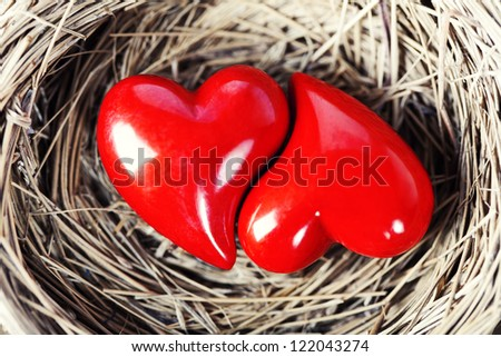 Two red hearts in bird's nest on wooden board