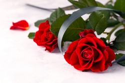 Two red roses with a black ribbon on a white background. Copy space. The concept of mourning and sorrow