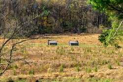 Two Reproduction Log Huts in a Large Field in Valley Forge National Historical Park