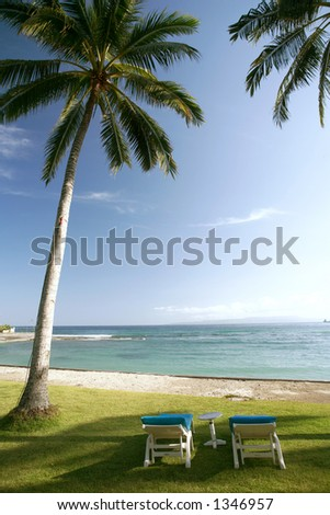 Two resort benches under a coconut tree on a beautiful beach