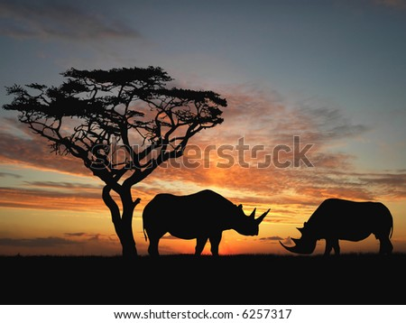 Two rhinoceros over orange sky