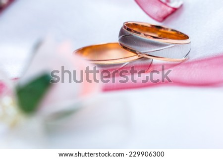 Two rings - a husband and wife in white gold. On white fabric with pink ribbon and flower roses in blurring.