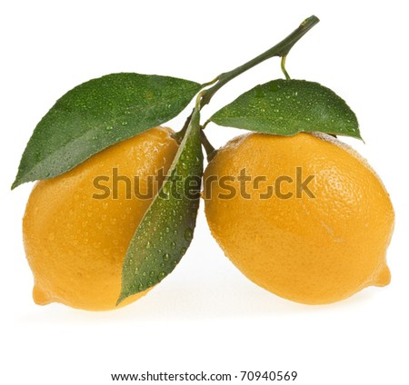 Two Ripe Lemon isolated on a white background