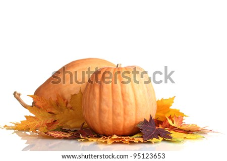 two ripe pumpkins and autumn leaves isolated on white